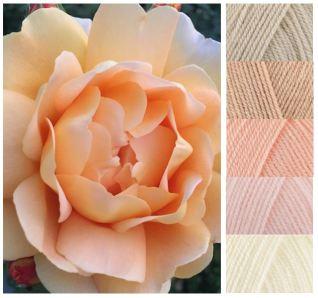 Peach rose DK