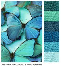 MB blue-butterflies