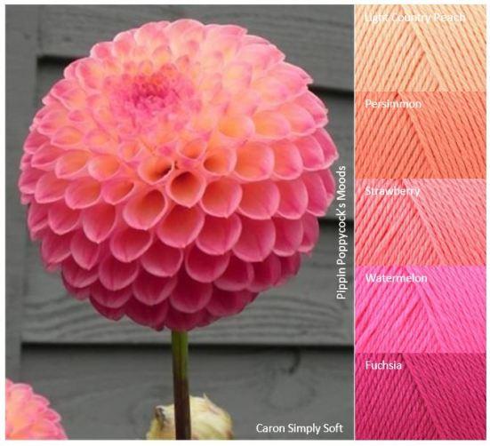 MB large-flower